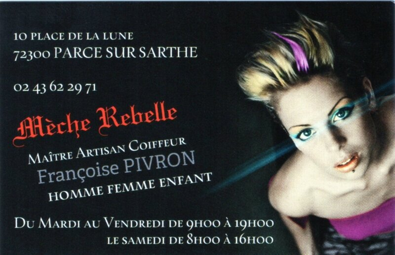 014 2 Logo Mèche Rebelle
