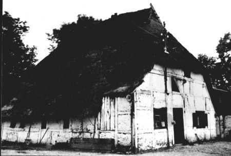 Schlawin_1931