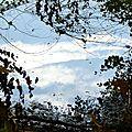 ciel d'automne sur l'étang1