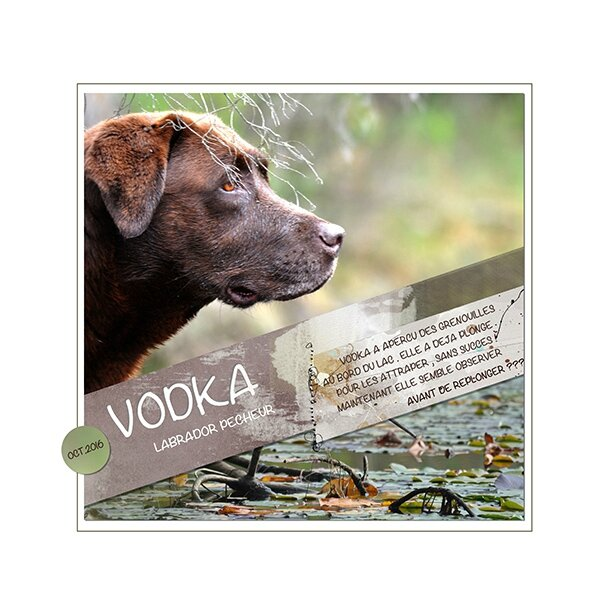 vodka chall web