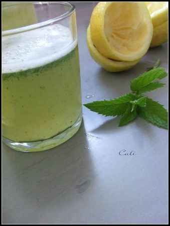 Lemon Mint 004