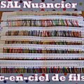 Sal nuancier # 1 : lancement officiel