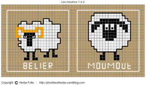 moutons_1_2