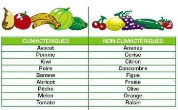 fruits climacteriques
