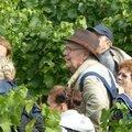 Dans les vignes de Suresnes 1 light