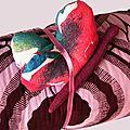 couverture _ zoom papillon 2