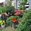 jardins fleuris 0470048