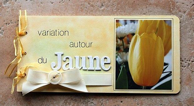 mini album variation autour du jaune 29/06