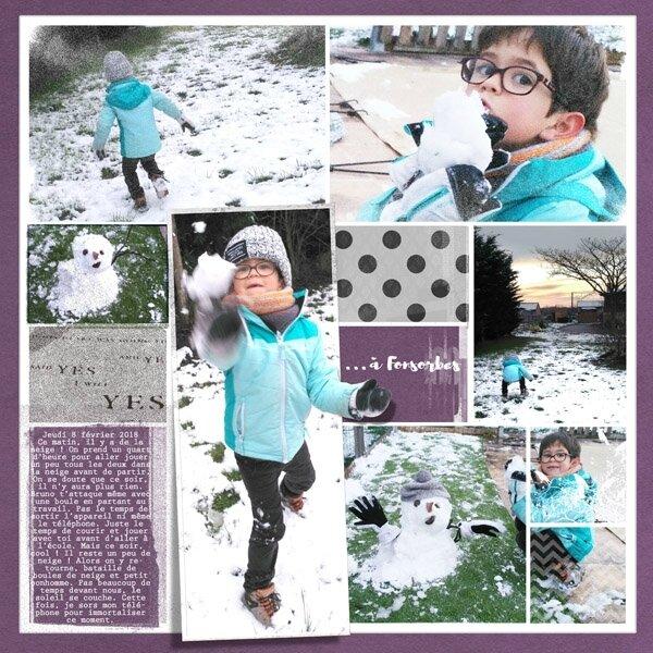 18-02 un peu de neige à Fonsorbes b