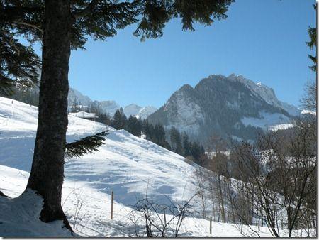 suisse 130