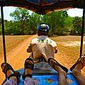Angkor Tuktuk!!