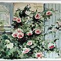 aquarelle watercolor roses garden french shabby chic watercolor valerie albertosi