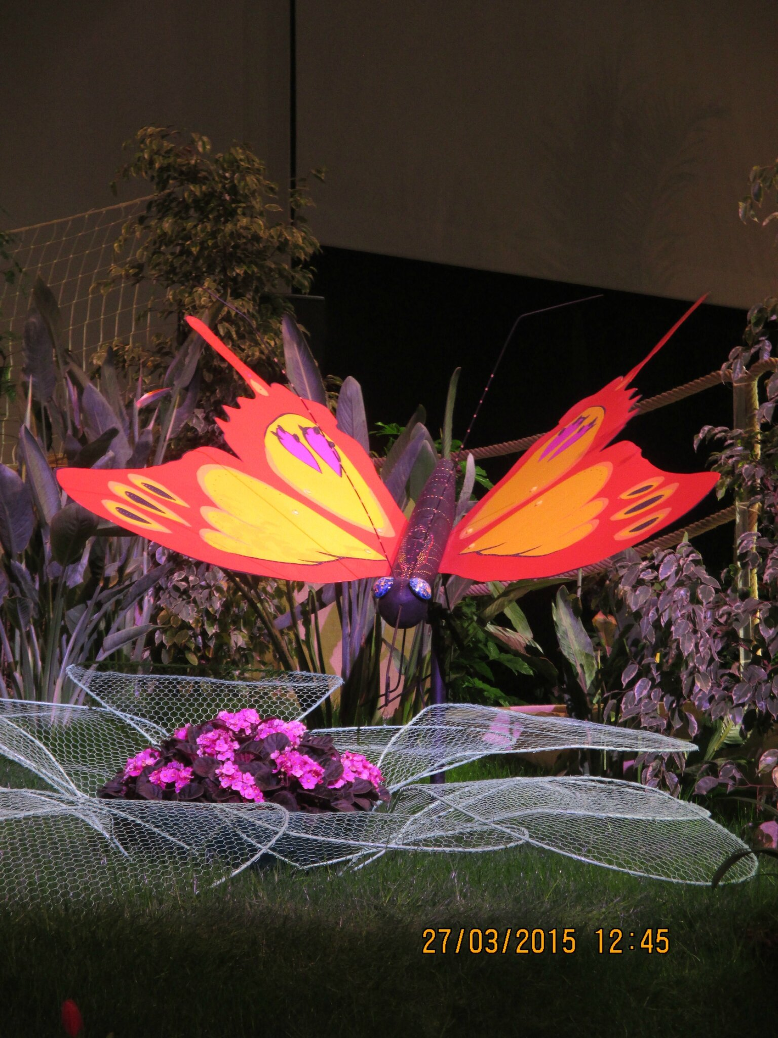 voilà la fin de notre balade,regardez bien la conception des fleurs de nénuphars...bonne soirée à tous et toutes♥