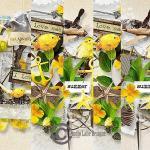 studiolaliedesigns_downwind_folder_bordures