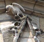 Dijon_Saint_Michel_8