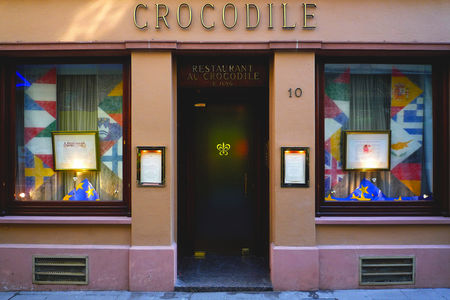 Crocodile_blog