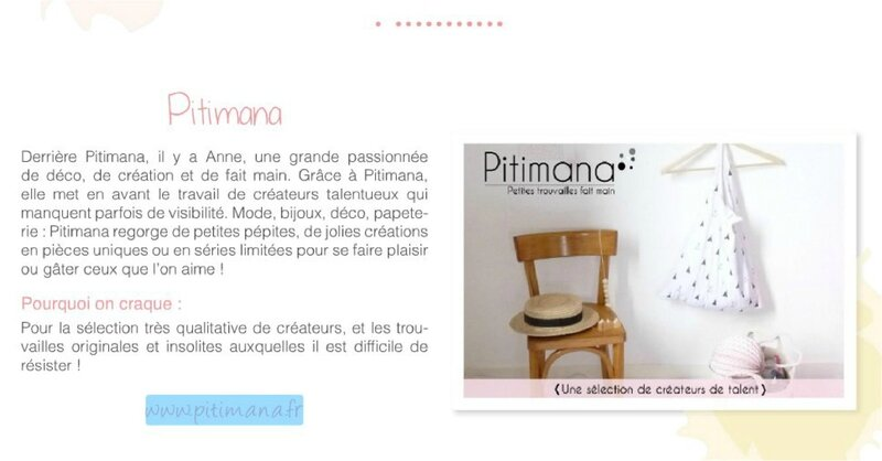 Pitimana Carnet Oh my Blog!_1