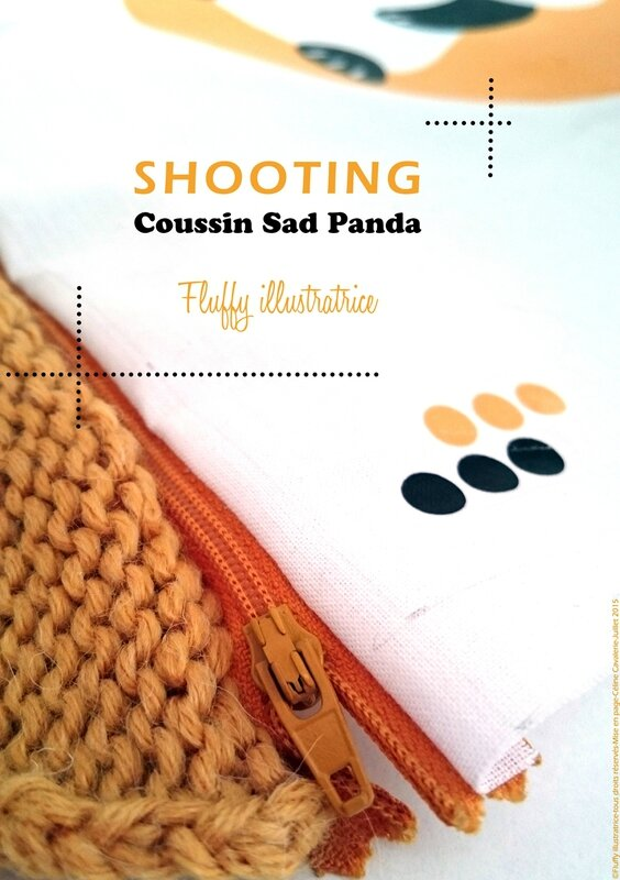 Shooting coussin panda_fluffy_tous_droits_reserves_V_blog copie