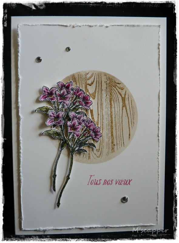 jardincroyable-stampinup-mscrapper-5