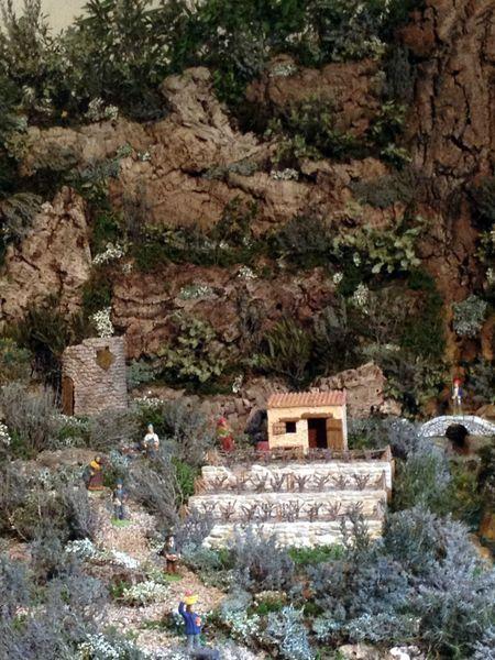 novembre 2012manège tilio-maeva 502