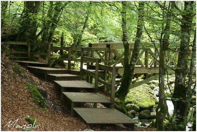 sous le bois enjambez ce petit pont de bois il vous emm ne photo de la libert de l 39 eau. Black Bedroom Furniture Sets. Home Design Ideas