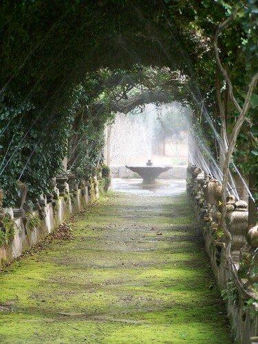 Alfabia-fontaine et tonnelle