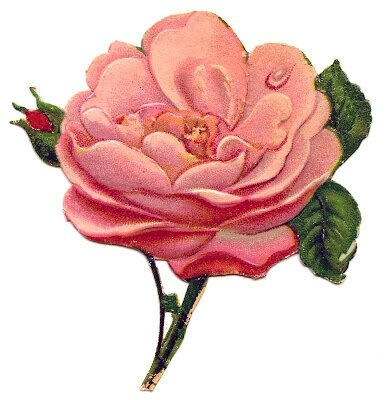 ScrapPink-Rose-Antique-GraphicsFairy