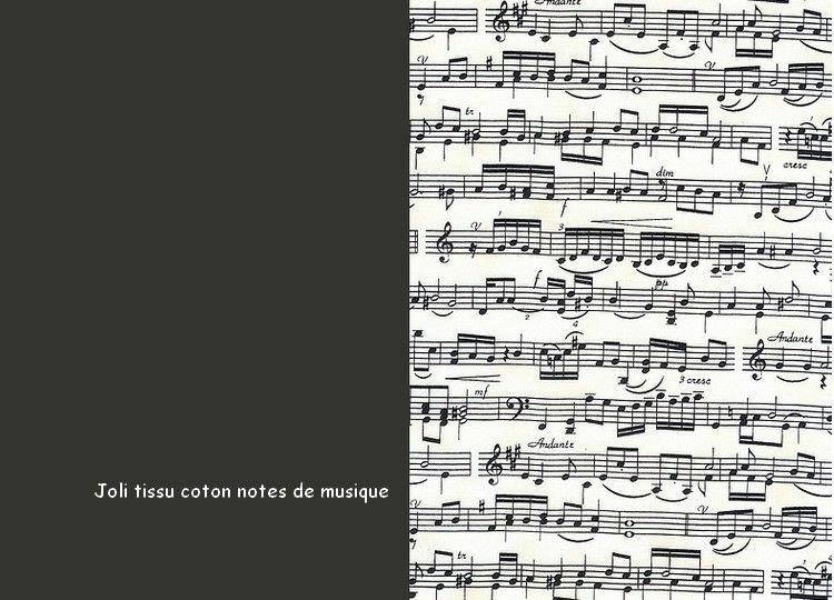 07_tissu_coton_notes_de_music