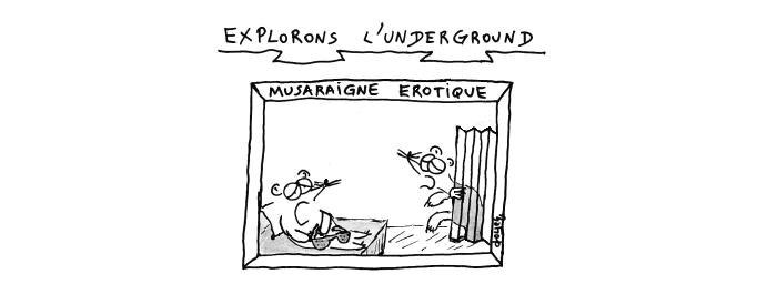 underground musaraigne