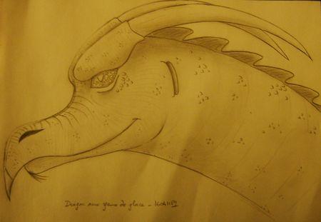 persilya_dragon_aux_yeux_de_glace_160411