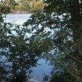 la Loire dans le Loir-et-Cher 41350