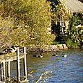 Lac d'Azur 171116