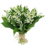 Muguet_en_bouquet