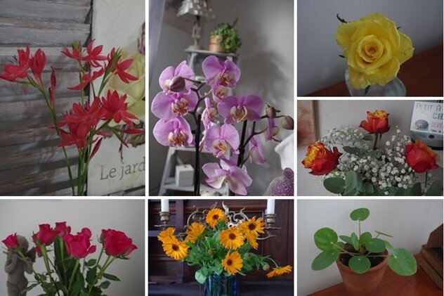 fleurs offertes