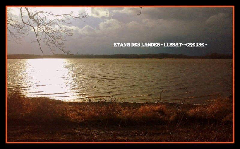 étang des Landes (25)
