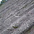 Vagues de pierre