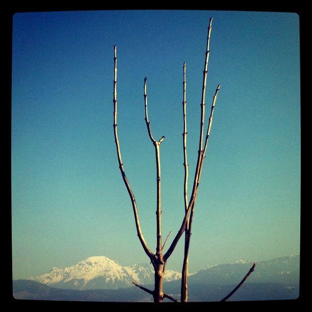 hiver_2010_060