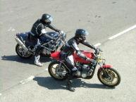 Arnos2009