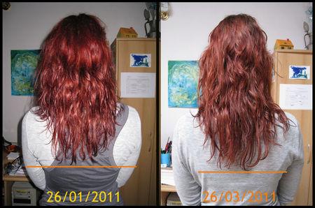 Cheveuxmars1