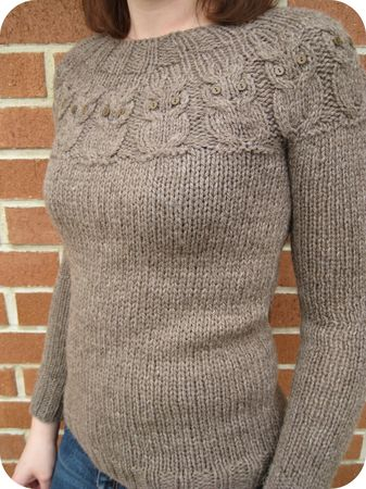 pull_chouette6