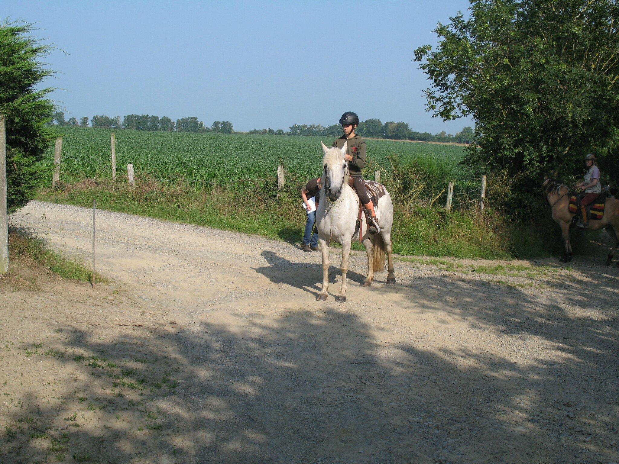 jeu du fer à cheval (10)