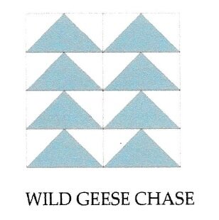 wild geese chase
