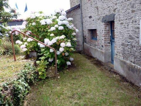jardin arriere 2007 ( 1 )