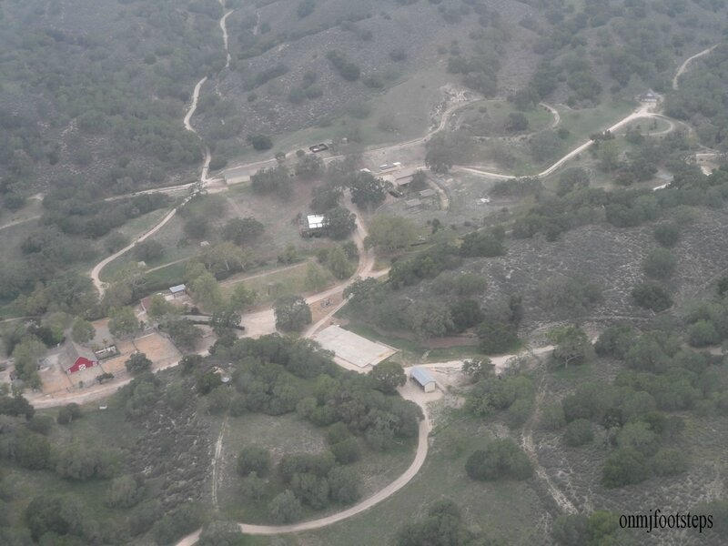 total zoo