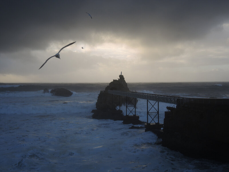 Biarritz, Rocher de la Vierge, fin de journée et mouette, mars (64)