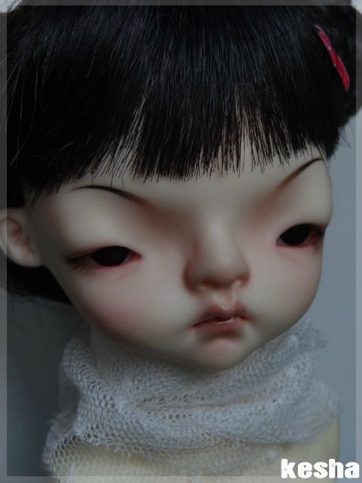domadoll-cooki6