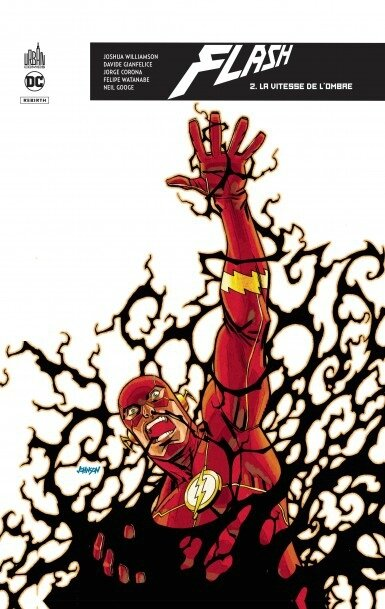 flash rebirth 02 la vitesse de l'ombre