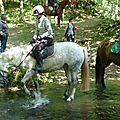 balade equestre gastronomique à La Lucerne d'Outremer (80)