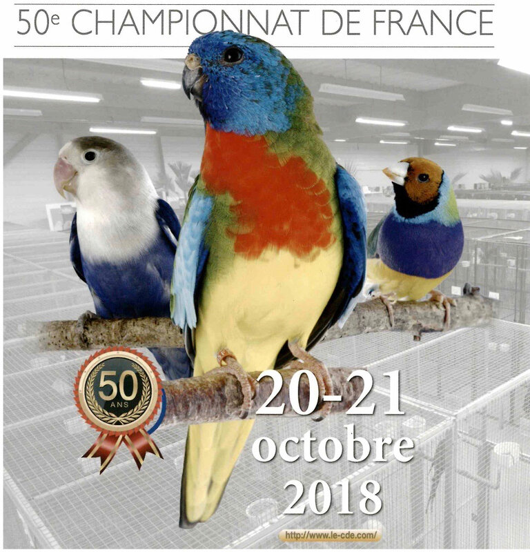 Championnat France Oiseaux