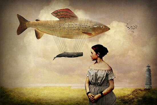 whale-watchingquot-by-catrin-welz-stein-redbubble-1390921297_bv